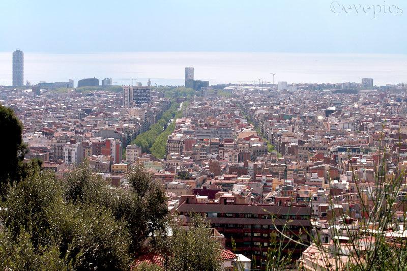 Barcelona Panorama I